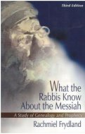 What the Rabbis Know About the Messiah